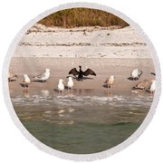 Cormorant Stands Out Round Beach Towel