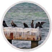Cormorants Key West Round Beach Towel