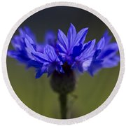 Cornflower Blue Round Beach Towel