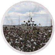 Cotton Ready For Harvest In Alabama Round Beach Towel