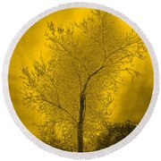 Cottonwood Tree April 2012 In Gold Round Beach Towel