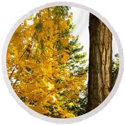 Country Color 19 Round Beach Towel