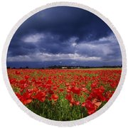 County Kildare, Ireland Poppy Field Round Beach Towel