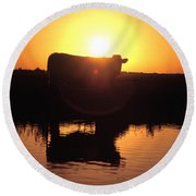 Cow At Sundown Round Beach Towel by Picture Partners and Photo Researchers
