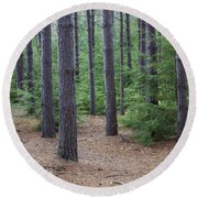 Cozy Conifer Forest Round Beach Towel