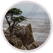 Cpress Round Beach Towel