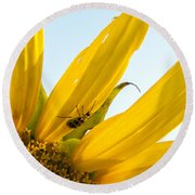 Crawling Along The Sunflower Round Beach Towel