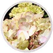 Cream Pink Hydrangea Flowers Art Prints Floral Round Beach Towel