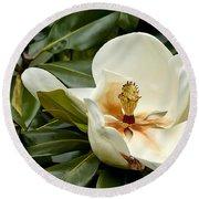 Creamy Magnolia Round Beach Towel