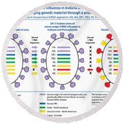 Creation Of H3n2 Influenza Virus Round Beach Towel