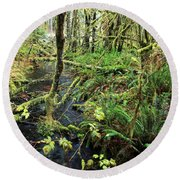 Creek In The Rain Forest Round Beach Towel