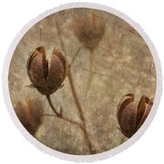 Crepe Myrtle Seed Pods With Grunge And Textures Round Beach Towel