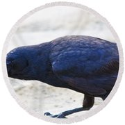 Crow Snacking Round Beach Towel