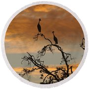 Crowned Cranes At Sunrise Round Beach Towel