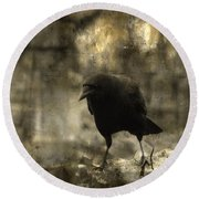 Curiosity Of The Graveyard Crow Round Beach Towel