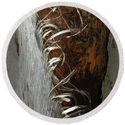 Curly Bark Of A Palm Tree Round Beach Towel