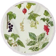 Currants And Berries Round Beach Towel by Elizabeth Rice