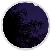 Cypress Moon Round Beach Towel