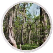 Cypress Trees And Water Hyacinth In Lake Martin Round Beach Towel