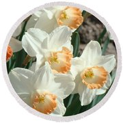 Daffodil Flowers Art Prints Spring Floral Round Beach Towel