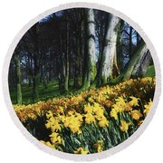 Daffodils Narcissus Flowers In A Forest Round Beach Towel