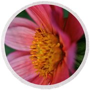 Dahlia Candles Round Beach Towel