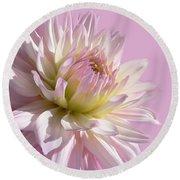 Dahlia Flower Pretty In Pink Round Beach Towel