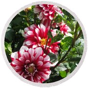 Dahlia Named Yoro Kobi Round Beach Towel