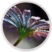 Daisy Abstract With Droplets Round Beach Towel