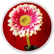 Daisy In Black Vase Round Beach Towel