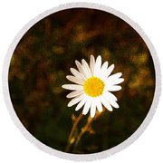 Daisy Is Single But Not Lonely  Round Beach Towel
