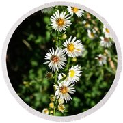 Daisy Production Line Round Beach Towel