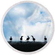 Dam Ducks Round Beach Towel
