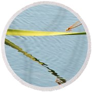 Damselfly Reflection Round Beach Towel
