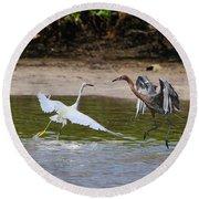Dancing Egrets Round Beach Towel