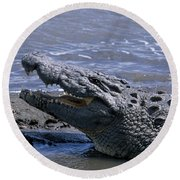 Danger On The Mara River Round Beach Towel