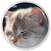 Daphne Cat Miss You Round Beach Towel