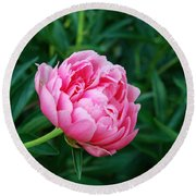 Dark Pink Peony Flower Series 2 Round Beach Towel