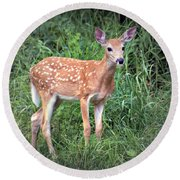 Darling Fawn Round Beach Towel