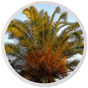 Date Palm Round Beach Towel
