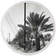 Date Palms On A Country Road Round Beach Towel
