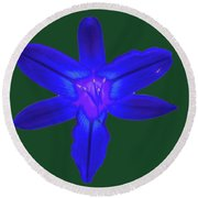 Day Lily Abstract Round Beach Towel