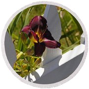 Day Lily And White Fence II Round Beach Towel