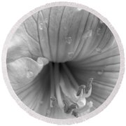 Day Lily Flower In Black And White Round Beach Towel