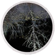 Dead Tree Reflects In Black Water Round Beach Towel