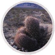 Death Valley Cactus Round Beach Towel