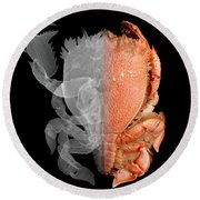 Deep Water Crab X-ray And Optical Image Round Beach Towel