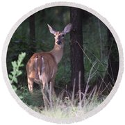 Deer - Doe - Nearing The Edge Round Beach Towel