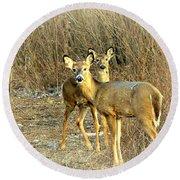 Deer Duo Round Beach Towel