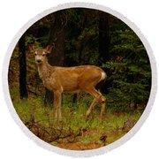 Deer Gazing  Round Beach Towel